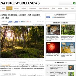 Nature and Calm: Studies That Back Up The Idea