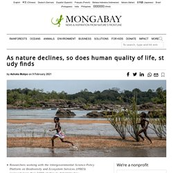 As nature declines, so does human quality of life, study finds