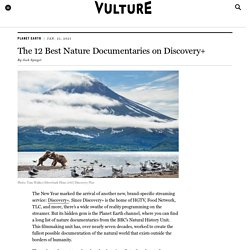 The 12 Best Nature Documentaries on Discovery+