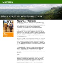 Nature of Matheran