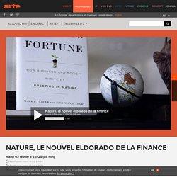Nature, le nouvel eldorado de la finance