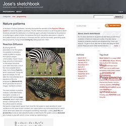 Nature patterns – Jose's sketchbook