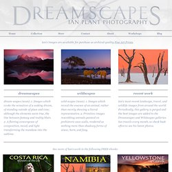 Ian Plant Dreamscapes Nature Photography Workshops Books Instruction