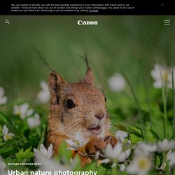 Urban nature photography tips - Canon Europe