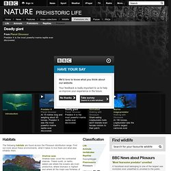 BBC Nature - Pliosaurs videos, news and facts