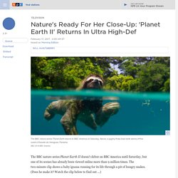 Nature's Ready For Her Close-Up: 'Planet Earth II' Returns In Ultra High-Def
