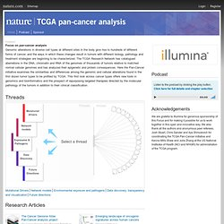 TCGA | TCGA Pan-Cancer Analysis