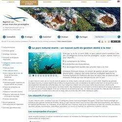Parc naturel marin - Catégories d'aires marines protégées - Les aires marines protégées