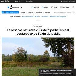 La réserve naturelle d'Erstein partiellement restaurée avec l'aide du public - France 3 Grand Est