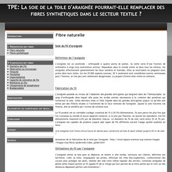 Fibre naturelle - TPE: La soie de la toile d'araignée pourrait-elle remplacer des fibres synthétiques dans le secteur textile ?