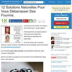 12 Solutions Naturelles Pour Vous Débarrasser Des Fourmis.