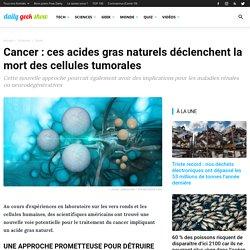 Cancer : ces acides gras naturels déclenchent la mort des cellules tumorales