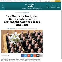 Les Fleurs de Bach, des elixirs «naturels» qui prétendent soigner par les émotions