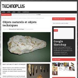 Objets naturels et objets techniques