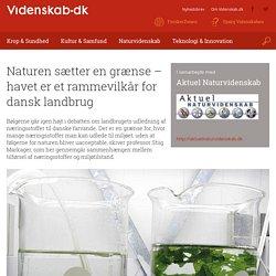 Naturen sætter en grænse – havet er et rammevilkår for dansk landbrug