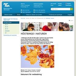 Höstbingo i naturen - Naturhistoriska riksmuseet