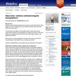 Naturrutan- världens enklaste/roligaste biologilektion! - Skoljobb.se
