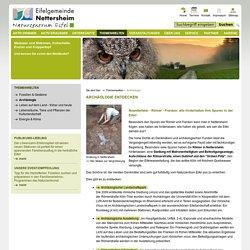 Naturzentrum Eifel in Nettersheim: Archäologie