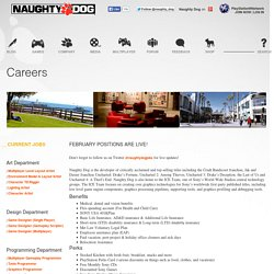 Naughty Dog Careers