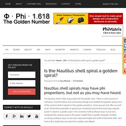 The Nautilus shell spiral as a golden spiral
