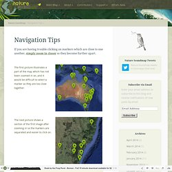 Navigation Tips