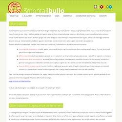 Smonta Il Bullo.it - Campagna nazionale contro il bullismo - Il Cyberbullismo