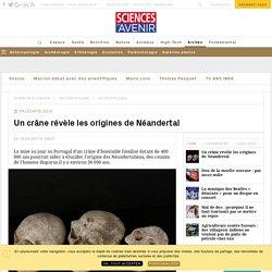 Un crâne fossile révèle les origines de l'homme de Néandertal - Sciencesetavenir.fr
