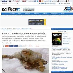 La marche néandertalienne reconstituée