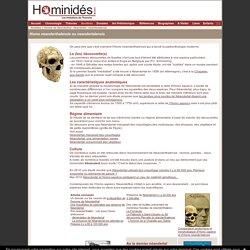 Homo neanderthalensis - Neandertal - Ancêtres