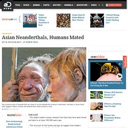 Asian Neanderthals, Humans Mated