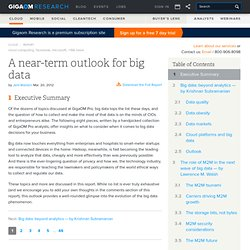A near-term outlook for big data