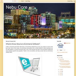 Nebu Core: What to Know About an eCommerce Software?