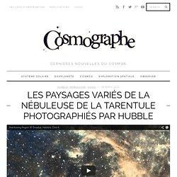 Les paysages variés de la nébuleuse de la Tarentule photographiés par Hubble