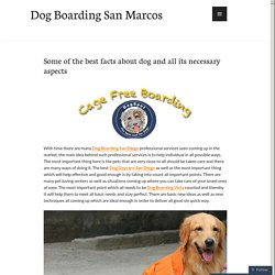Dog Boarding Encinitas San Marcos