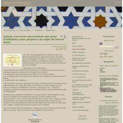 DI - Quinze exercices nécessitant une prise d'initiative pour préparer un sujet de brevet blanc