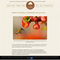 Plantes nectarifères et pollinifères mois par mois