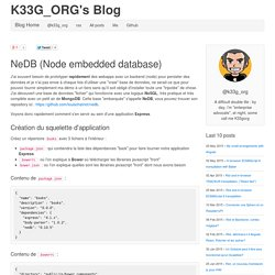 NeDB (Node embedded database)