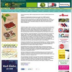 Spaanse en Nederlandse komkommers geen bron EHEC-bacterie