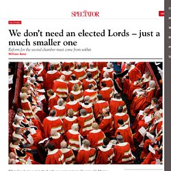We don't need an elected Lords – just a much smaller one
