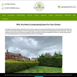 Why You Need a Landscaping Expert for Your Garden