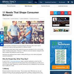 11 Needs That Shape Consumer Behavior