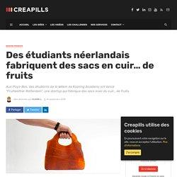 Des étudiants néerlandais fabriquent des sacs en cuir... de fruits - Creapills