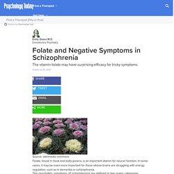 Folate and Negative Symptoms in Schizophrenia