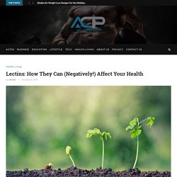 Lectins How They Can (Negatively!) Affect Your Health