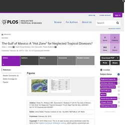 "PLOS 26/02/15 The Gulf of Mexico: A ""Hot Zone"" for Neglected Tropical Diseases?"