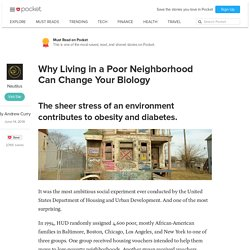 Why Living in a Poor Neighborhood Can Change Your Biology - Nautilus - Pocket