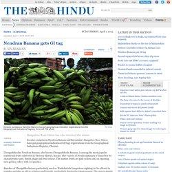 Nendran Banana gets GI tag