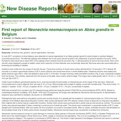 BSPP 02/11/17 First report of Neonectria neomacrospora on Abies grandis in Belgium