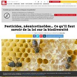 Pesticides, néonicotinoïdes… Ce qu'il faut savoir de la loi sur la biodiversité - Sud Ouest.fr