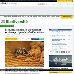 Les néonicotinoïdes, un puissant contraceptif pour les abeilles mâles